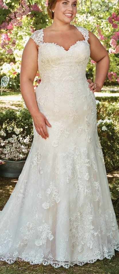 Wedding Dresses : The Ultimate Guide to Wedding Gowns for Curvy ...